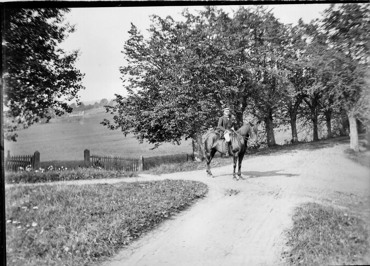 August Wetlesen til hest foran alleen på Linderud Gård.