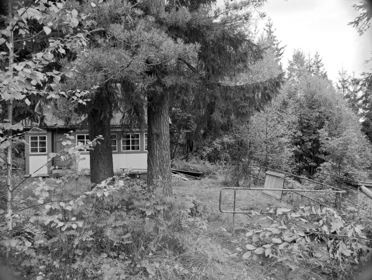 Område:  Hytte i skog.