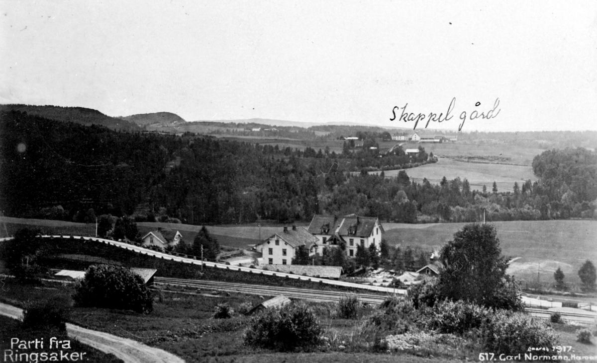 Oversikt, Stasjonsbygda, Ringsaker. Tandem handel, Bjerregård, Skappel gård, Ringsaker.