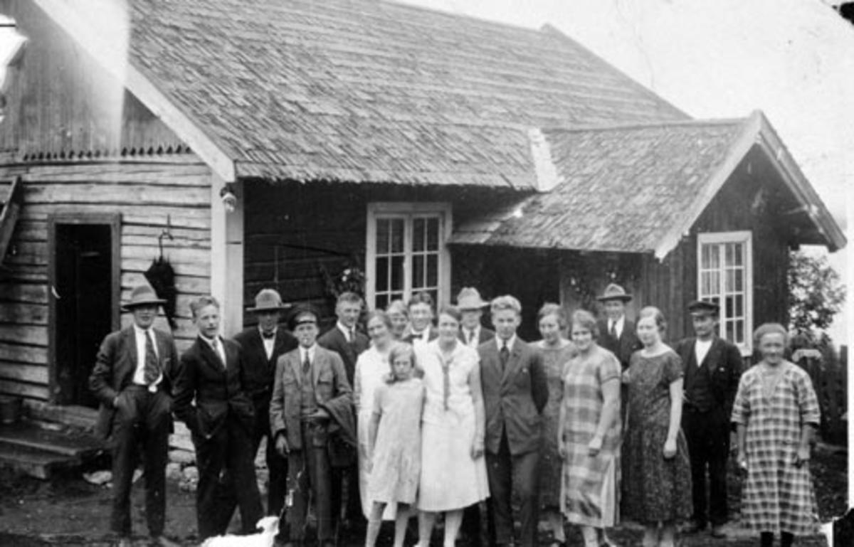 Familien Johansen, Nordgrefsheim, Nes, Hedmark. Marit Torsteinsdatter Presthegge F.1881, Ludvig Johansen F.1881, Lovise Margrete, Thea mellom foreldrene, slekt og venner.
