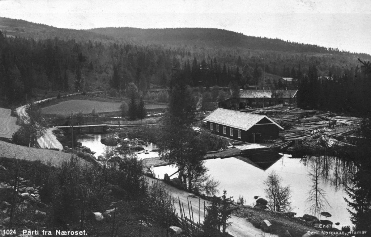 Postkort. Parti fra Næroset i Ringsaker. 1024. Carl Normann, Hamar. 1920.