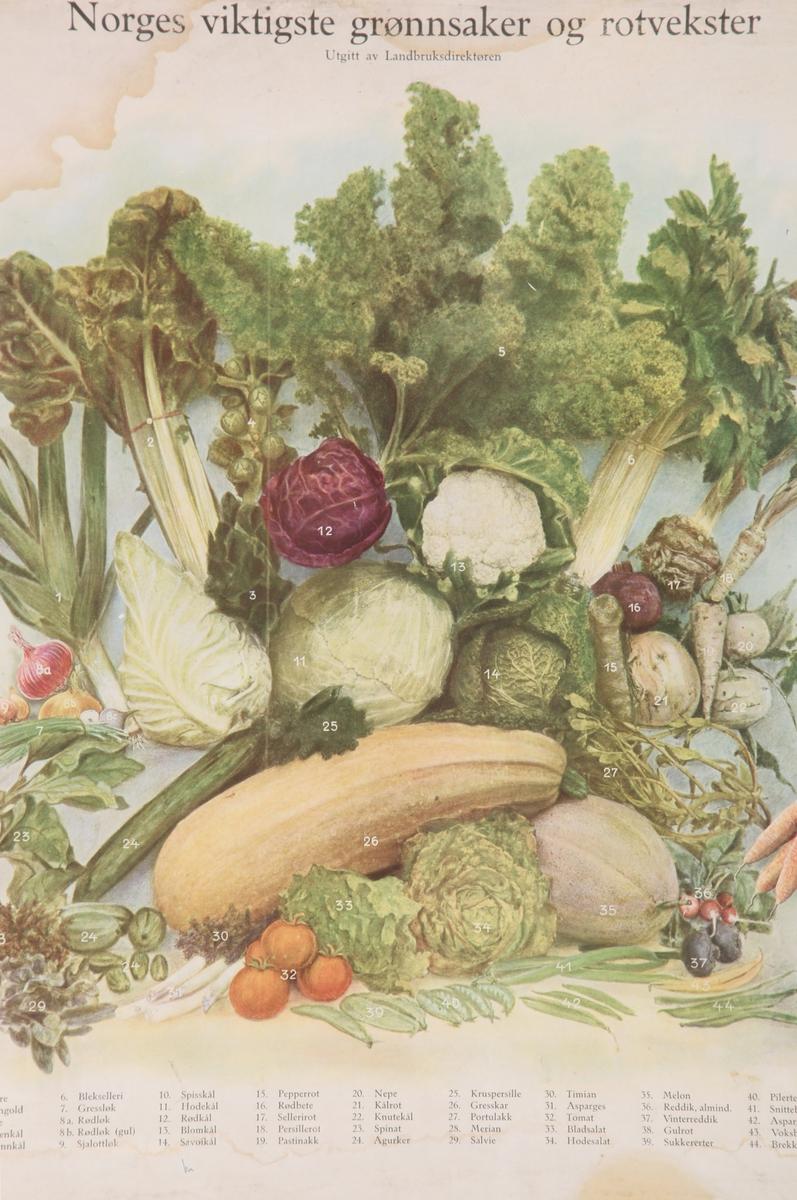 Grønnsaker og rotvekster