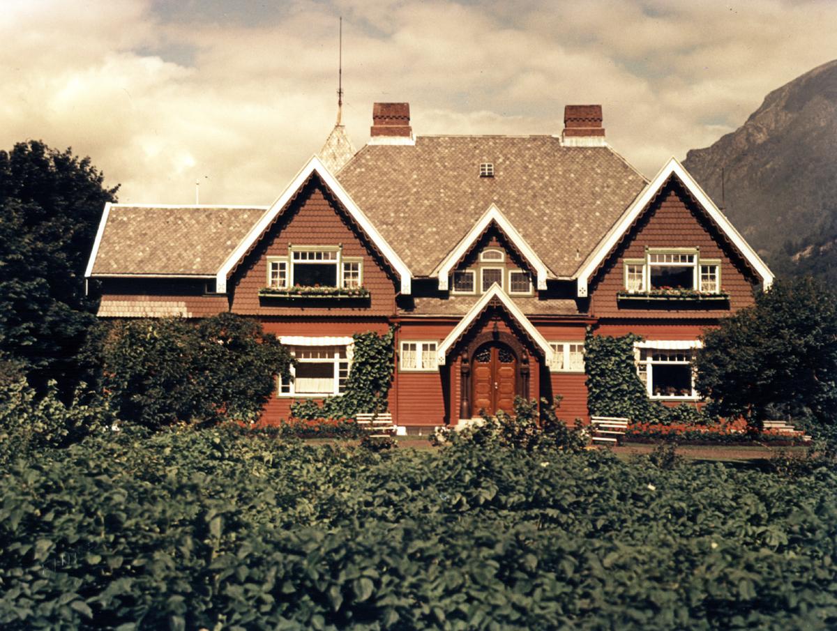 Brucevillaen, direktørbustad, hus, hage, planter