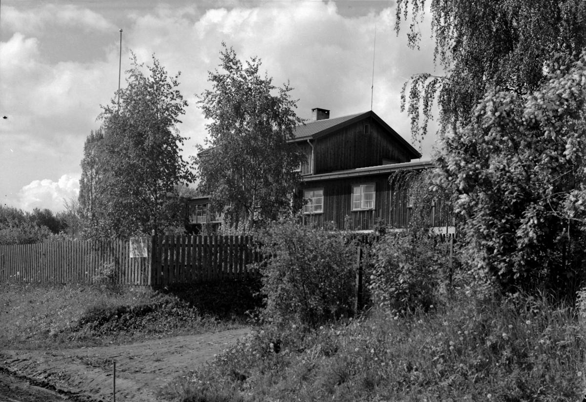 TANNLEGE HOLENE, NES H. BOLIGHUS.