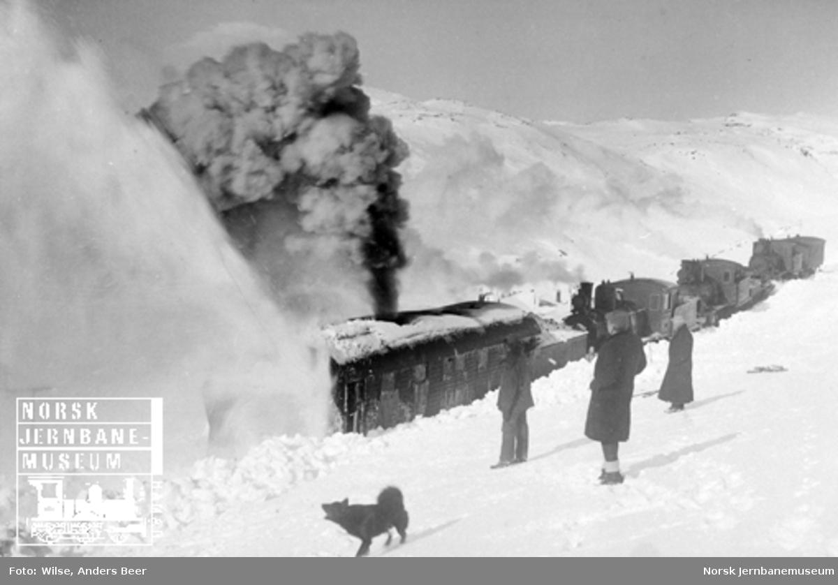 Roterende snøplog i arbeid på Bergensbanen, skjøvet av tre damplokomotiver av type 21a