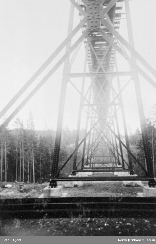 Lysedal viadukt, pillarene fotografert nedenfra