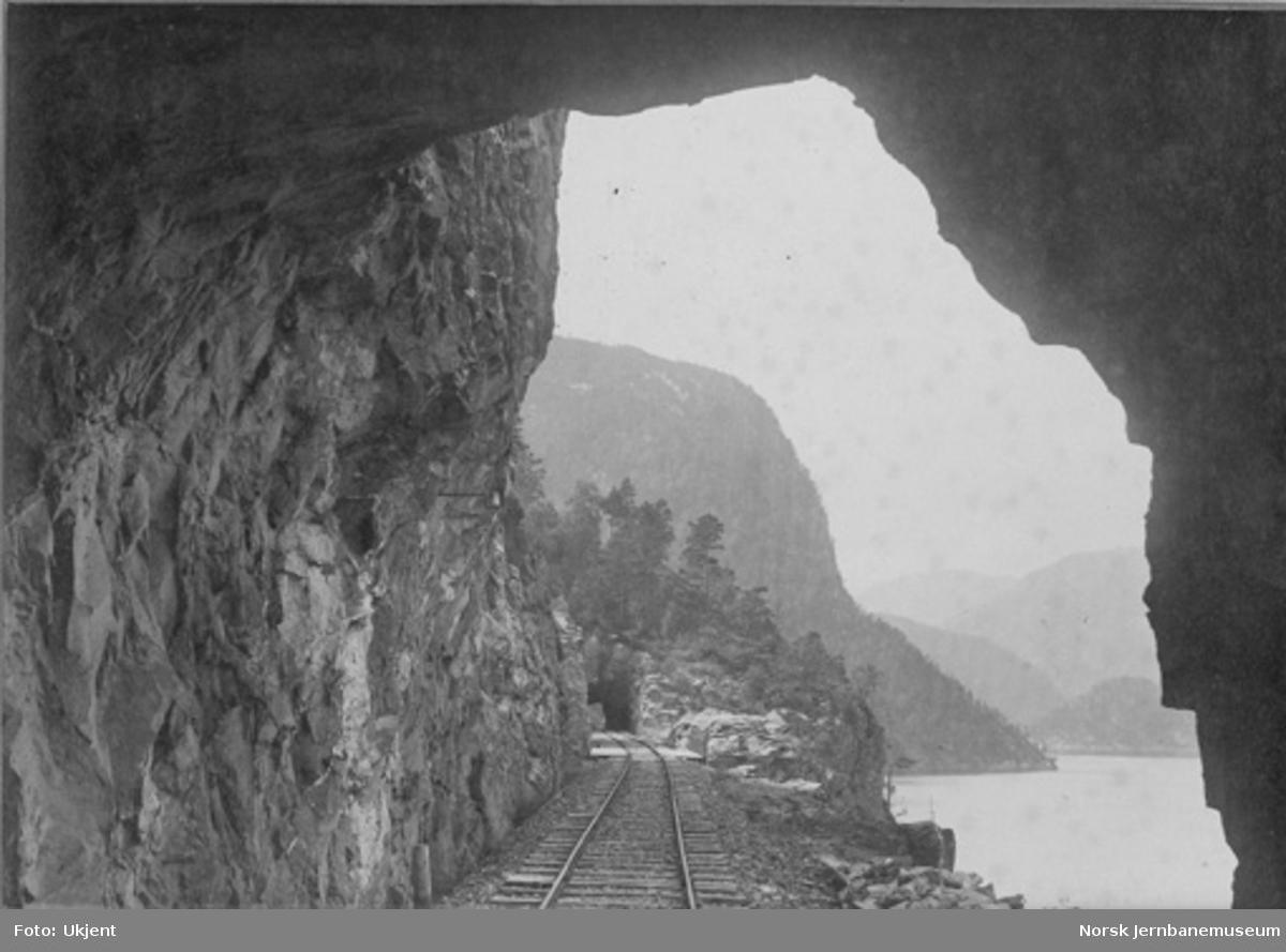 Parti fra Vossebanen; tunneler mellom Dale og Bolstad
