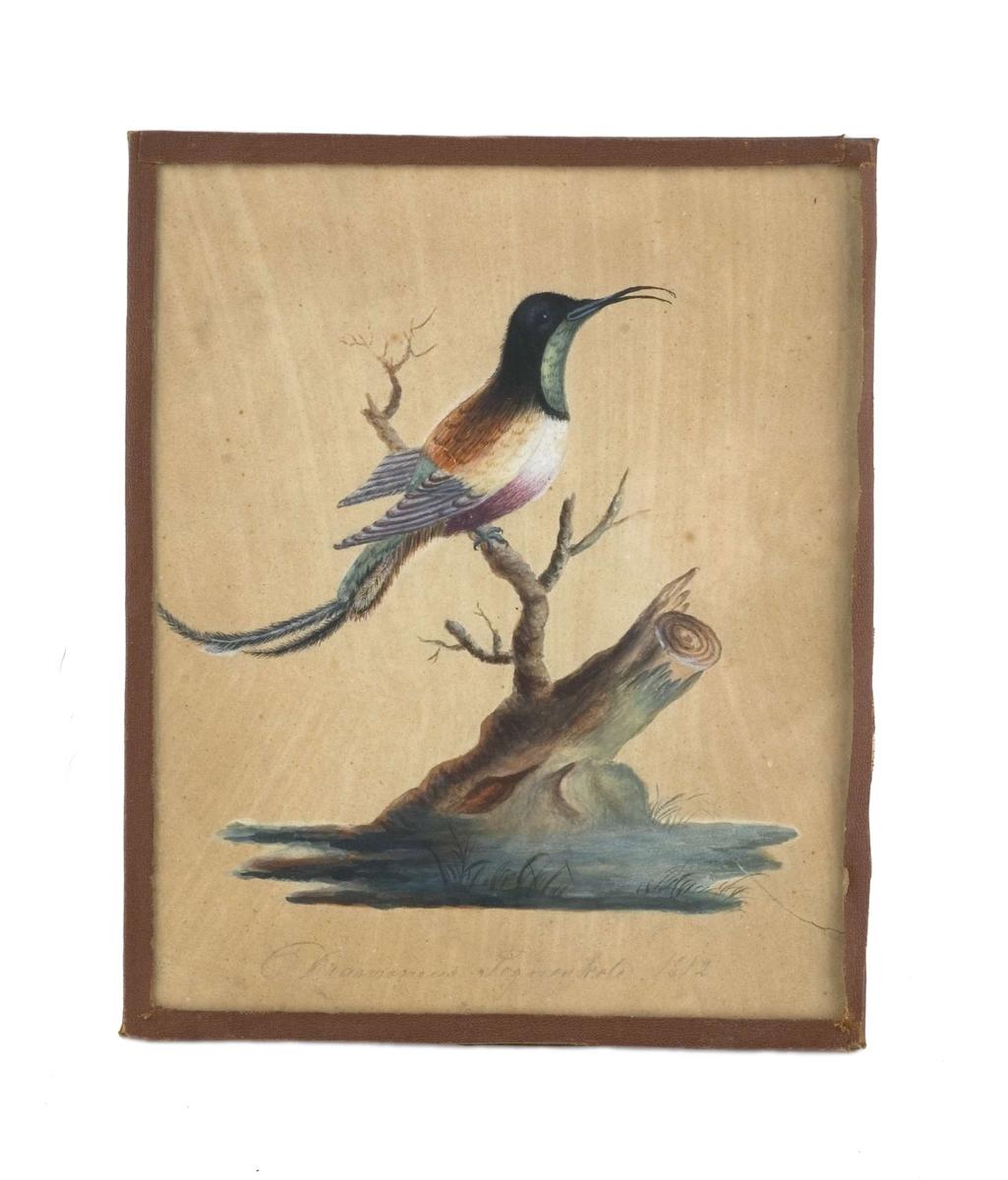 """Billedprotokoll: """"Akvarell med glass og kant av brunt skinn..."""""""